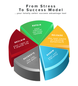 from stress to success model