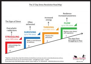 37 Day Stress Resolution Road Map