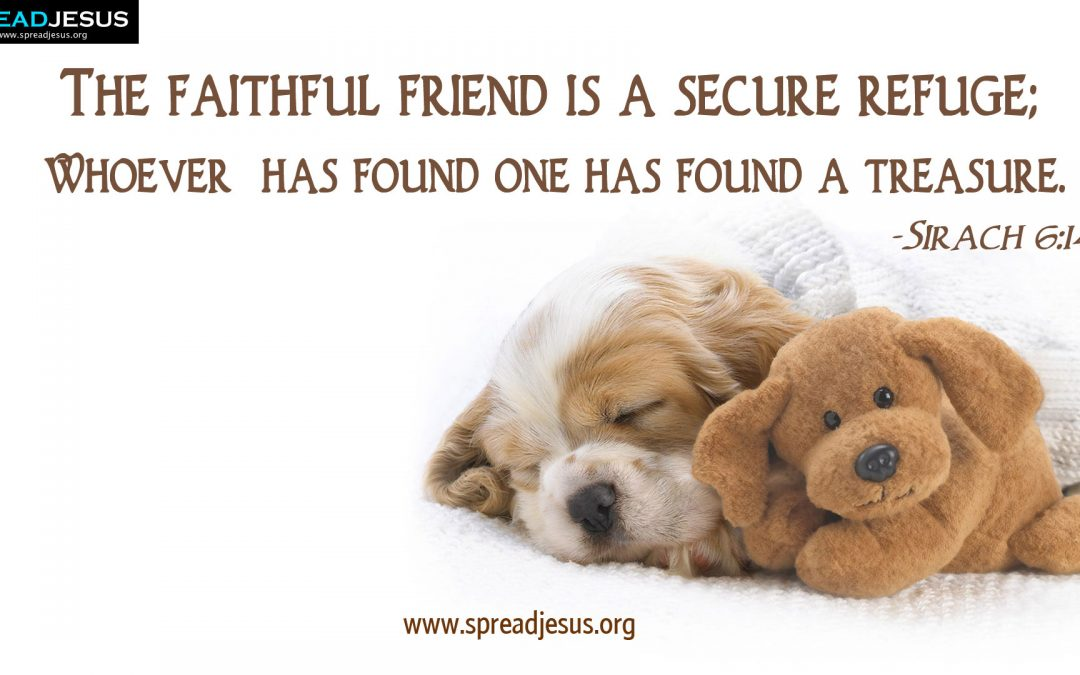 The faithful friend is a secure refuge; whoever has found one has found a treasure